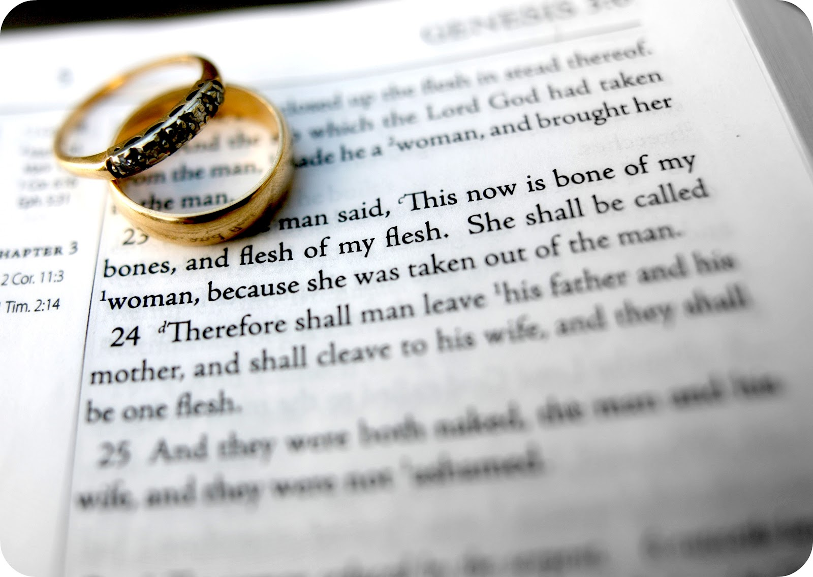 Bible Quotes About Relationships Bible Quotes About Relationships Beauteous Top 7 Bible Verses
